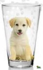 Pohár Üdítős NADIA PET Kutya 3db 310ml M88340